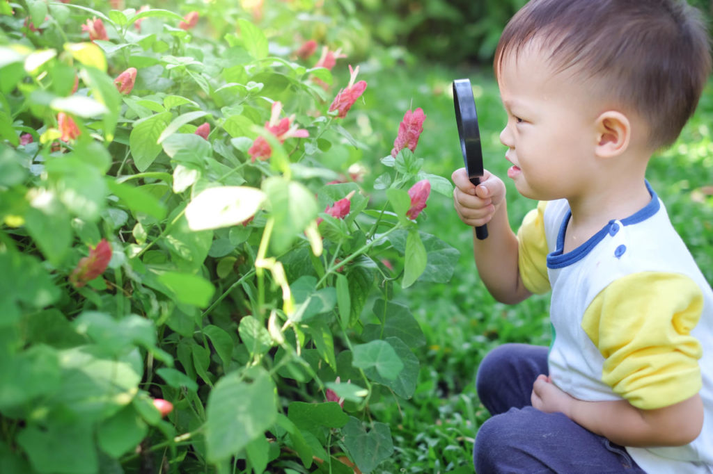Getting Outside Every Day With B-Ball And Gardening- Preschool & Daycare Serving Milton, Harrington, Dover & Camden, DE